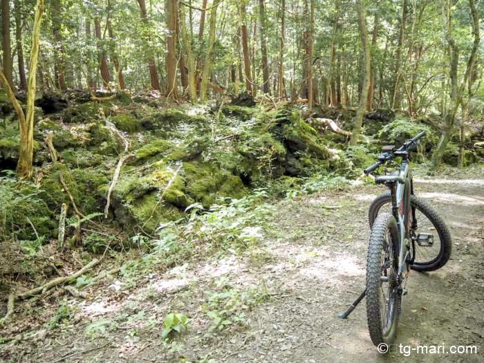 星のや富士のサイクリング