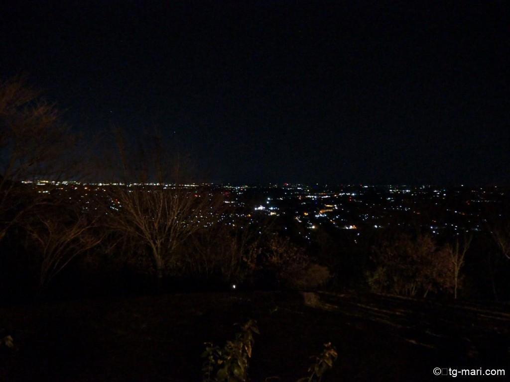スカイキャビンからの夜景